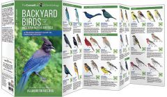 Backyard Birds: Western North America (All About Birds Pocket Guide®)