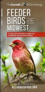 Feeder Birds of the Midwest (All About Birds Pocket Guide®)