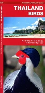 Thailand Birds (Pocket Naturalist® Guide)