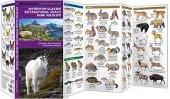 Waterton-Glacier International Peace Park Wildlife (Pocket Naturalist® Guide)