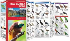 New Guinea Birds (Pocket Naturalist® Guide)