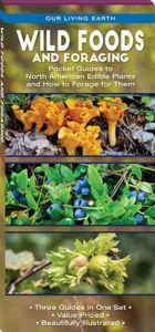 Wild Foods and Foraging: Folding Pocket Guides to North American Edible Plants and How to Forage for Them (Our Living Earth® Series)