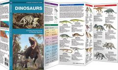 Dinosaurs, 2nd Edition: A Folding Pocket Guide to Familiar Species (Pocket Naturalist® Guide)