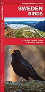 Sweden Birds (Pocket Naturalist® Guide)