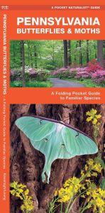 Pennsylvania Butterflies & Pollinators (Pocket Naturalist® Guide)