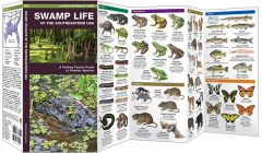Swamp Life of the Southeastern USA (Pocket Naturalist® Guide)