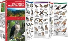 Great Smoky Mountains Birds, 2nd Edition (Pocket Naturalist® Guide)
