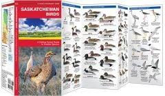 Saskatchewan Birds (Pocket Naturalist® Guide)