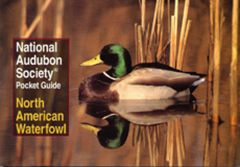North American Waterfowl (National Audubon Society® Pocket Guide)