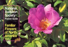Familiar Flowers of North America: East (National Audubon Society® Pocket Guide)