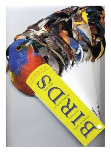 Wild Birds of North America: Appearance, Habits, and Habitat (Fandex® Family Field Guide)
