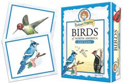 Birds of North America Card Game (Professor Noggin's®)