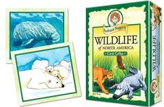 Wildlife of North America Card Game (Professor Noggin's®)