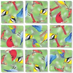 Birds (North American) Scramble Squares®