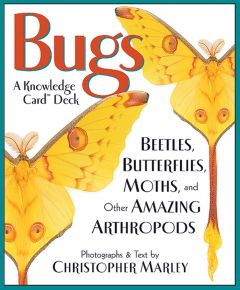 Bugs: Beetles, Butterflies, Moths, and Other Amazing Arthropods (Knowledge Cards®)