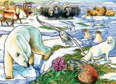 Arctic Adventure (35-Piece Tray Puzzle)