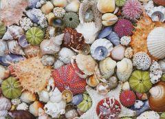 Seashore (1000 Piece Puzzle)