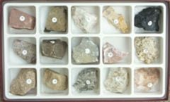 Sedimentary Rocks (Specimen Collection)