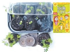 Tickle Me Plant® Greenhouse Kit