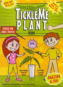 Tickle Me Plant Seed Packs