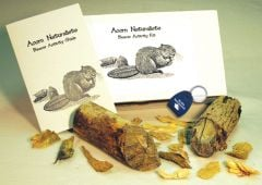 Beaver Clues (Animal Signatures Discovery Kit®)