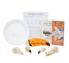Diversity in Bird Beaks Discovery Kit®