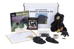 Wildlife Discovery® Kit: Black Bear