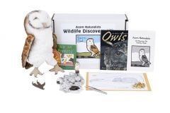 Wildlife Discovery® Kit: Owl