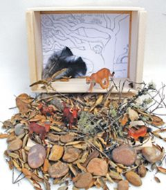 Oak Woodland Diorama (Create-A-Scene® Habitat Diorama Kit)