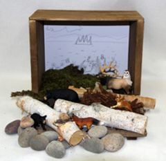 Meadow Diorama (Create-A-Scene® Habitat Diorama Kit)