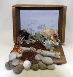 Prairie Diorama (Create-A-Scene® Habitat Diorama Kit)
