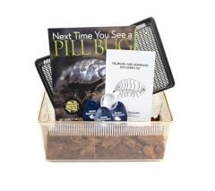 Pillbug and Sowbug Discovery Kit®