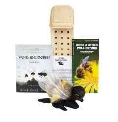 Bee Conservation Discussion Kit®