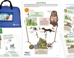 Food Webs: NGSS 2-D Model Building Kit