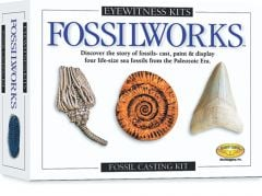 Fossilworks Casting Kit (Eyewitness Kits)