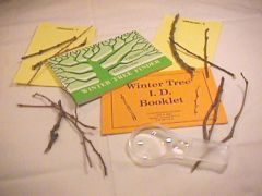 Winter Tree Identification Kit
