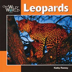 Leopards (Our Wild World Series)