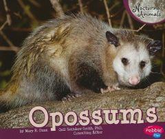 Opossums (Nocturnal Mammals Series)