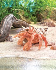 Crab (Hermit) Puppet