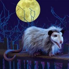 Opossum Puppet