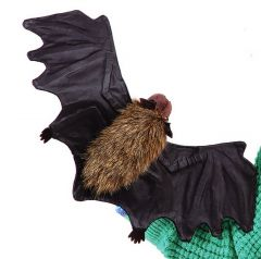 Bat (Little Brown) Puppet