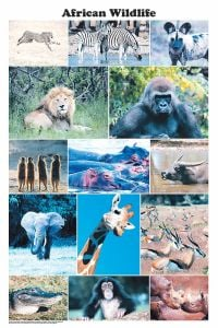 African Wildlife (Laminated Poster)