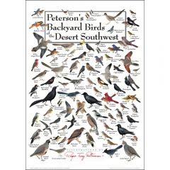 Peterson's Backyard Birds of the Desert Southwest Poster