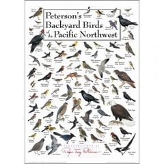 Peterson's Backyard Birds of the Pacific Northwest Poster