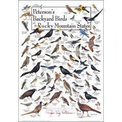 Peterson's Backyard Birds of the Rocky Mountain States Poster