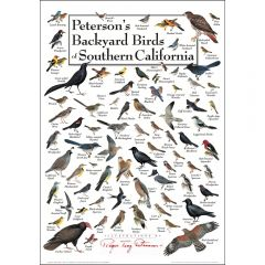 Peterson's Backyard Birds of Southern California Poster