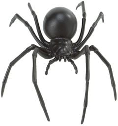 Spider (Black Widow) Model
