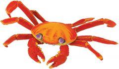 Crab (Shore) Model