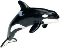 Orca (Tail Down) Model