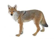 Coyote Model